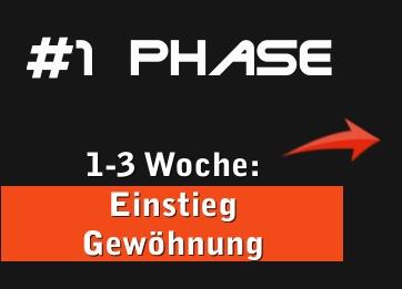 1 Phase